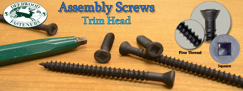 Assembly Screws Trim